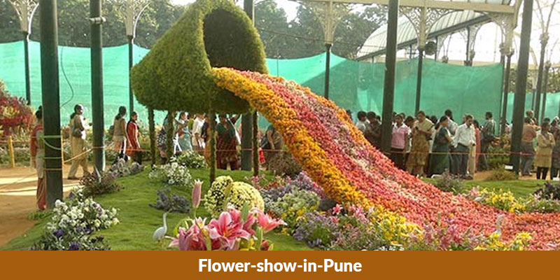 Flower Show In Pune