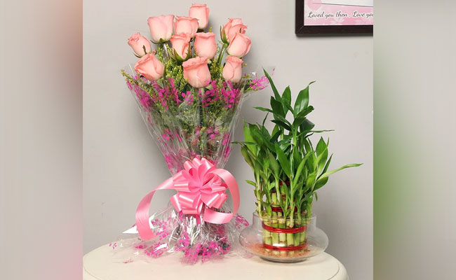 Flowers and indoor plants To Pamper Your Mom