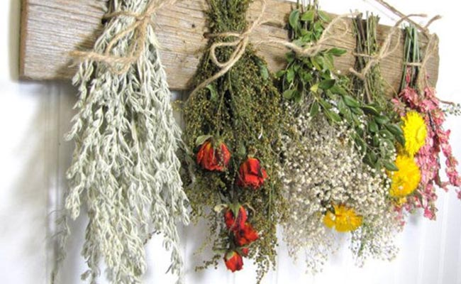 Flowers That You Can Pick To Make Homemade Incense