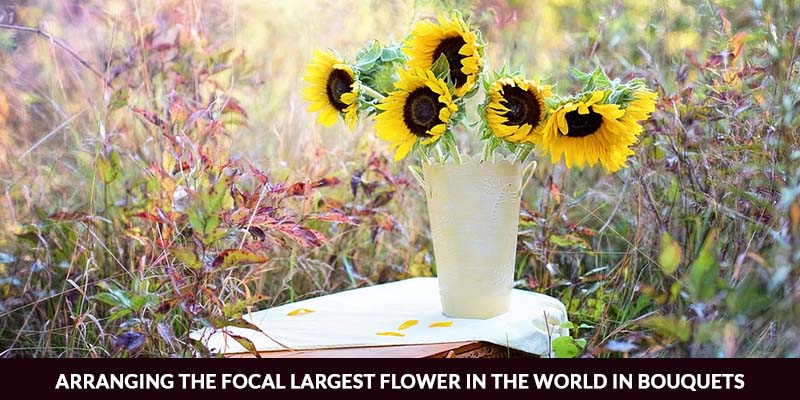 focal largest flower in the world in bouquets