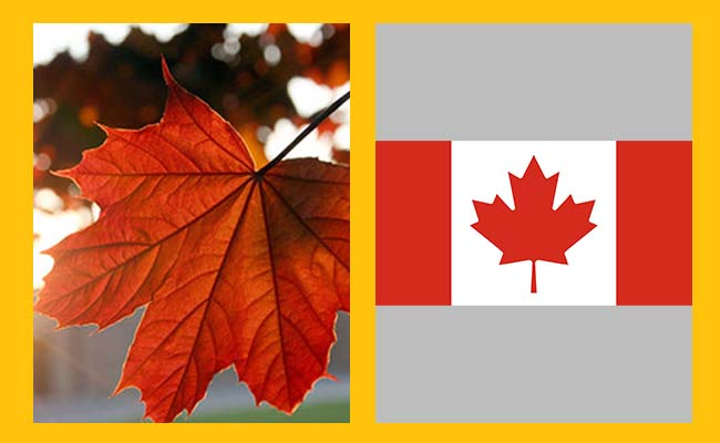 Maple Leaf – Canada
