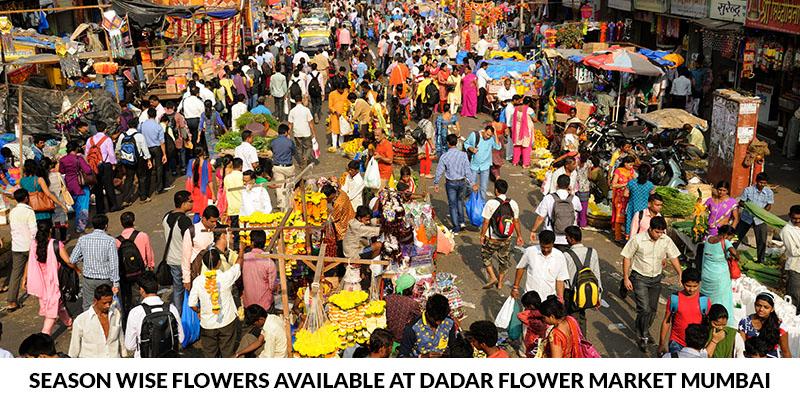Wholesale Flower Market in Mumbai Dadar