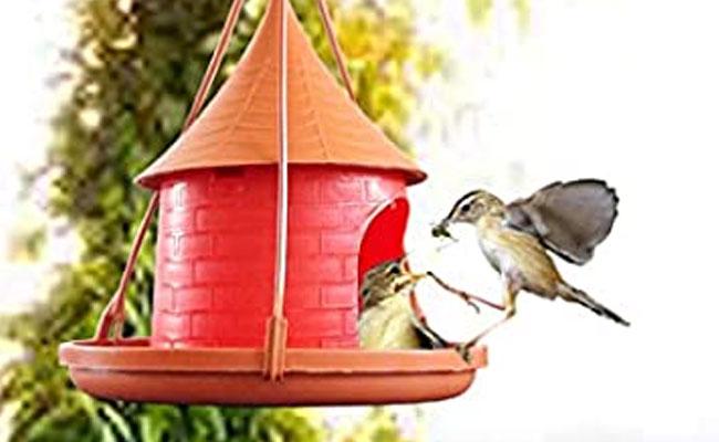 Bird Nest Cum Feeder
