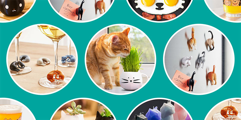 Purrfect Gifts for Cat Lovers in your Life