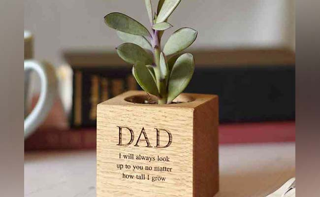 The Quote & Plant