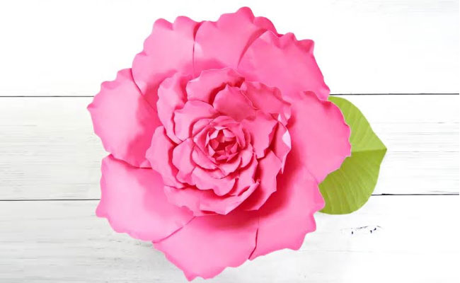 Peony Paper Flowers