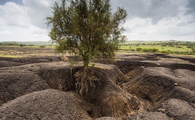 Risk Of Causing Soil Erosion