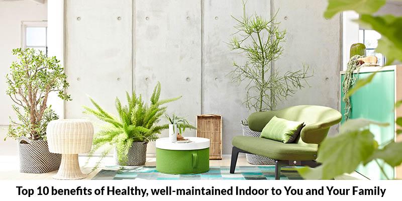 Top 10 Benefits of Healthy, Well Maintained Indoor