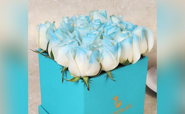 Ice Blue Flowers with Picture Perfect Caricature
