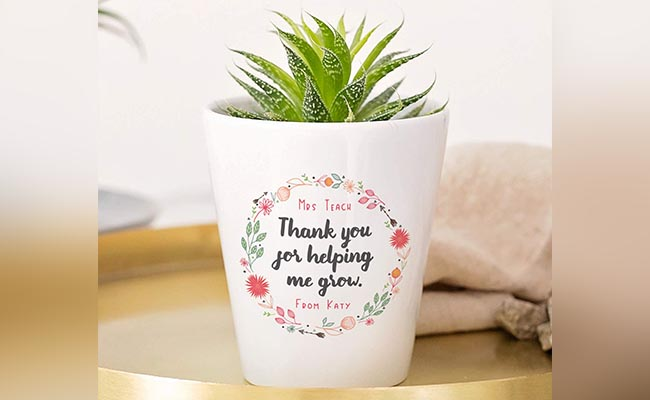 Indoor Plant With Personalised Pot For Colleague