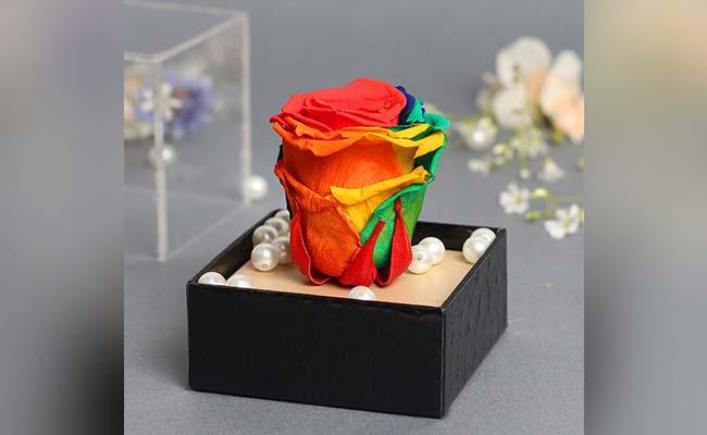 Preserved Rainbow Rose for girl