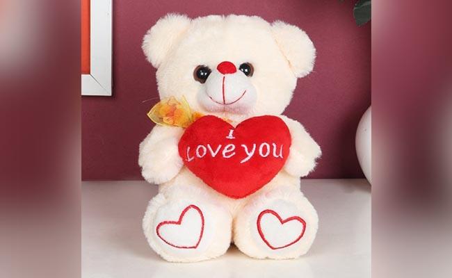 I Love You Teddy Bear for Girlfriend