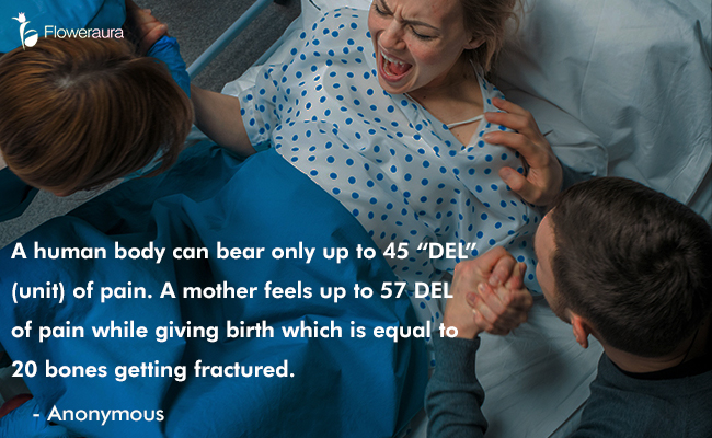 Mothers Day quote 13 - A human body can bear only up to 45 DEL (unit) of pain. A mother feels up to 57 DEL of pain while giving birth which is equal to 20 bones getting fractured. - Anonymous