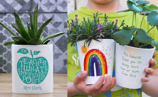 Personalised Plant for teacher