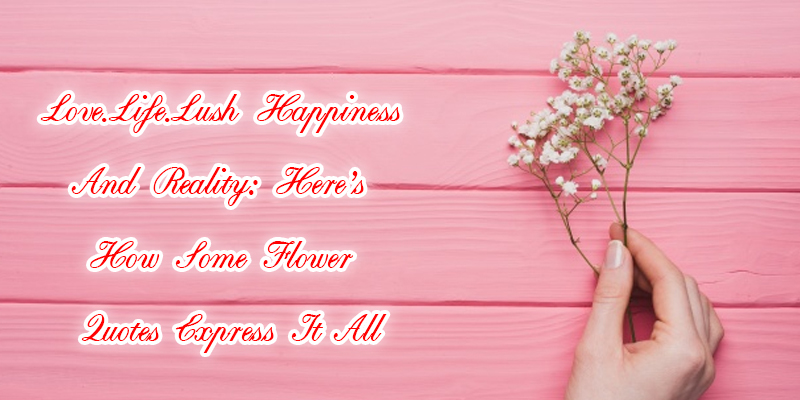 how some flower quotes express love life lush happiness and reality