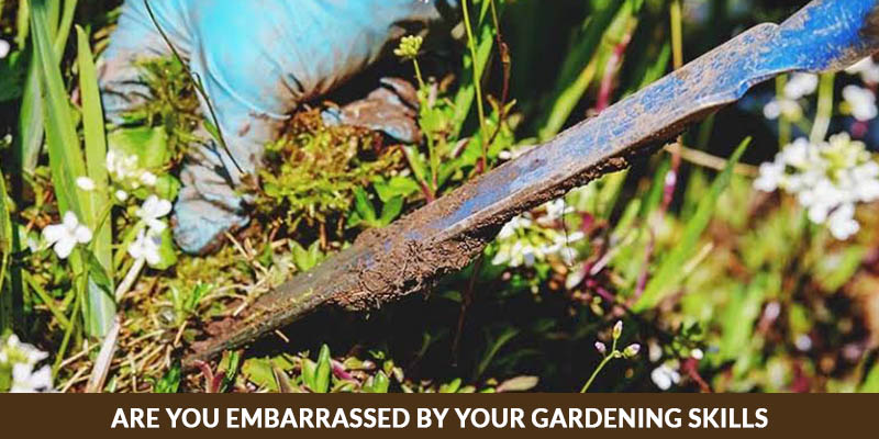 Are You Embarrassed By Your Gardening Skills? Here's What To Do