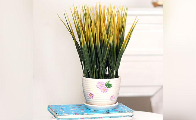 Artificial Lemon Grass Plants