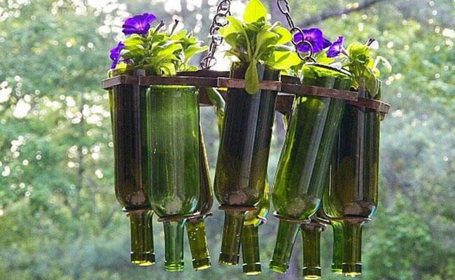 Glass Bottle Hanging Flower Pot