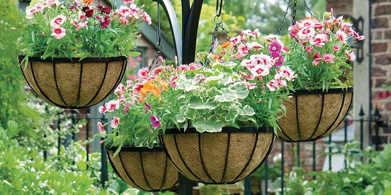 Hanging Flower Pots Ideas