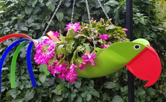 Tropical Toucan Hanging Flower Basket