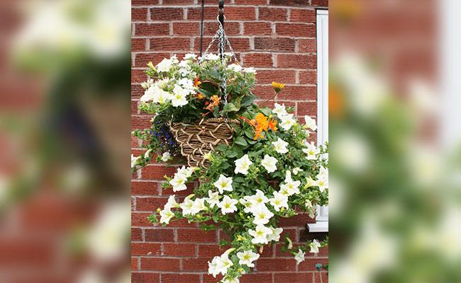 Wood Splint Hanging Flower Pot With Overflowed Flowers