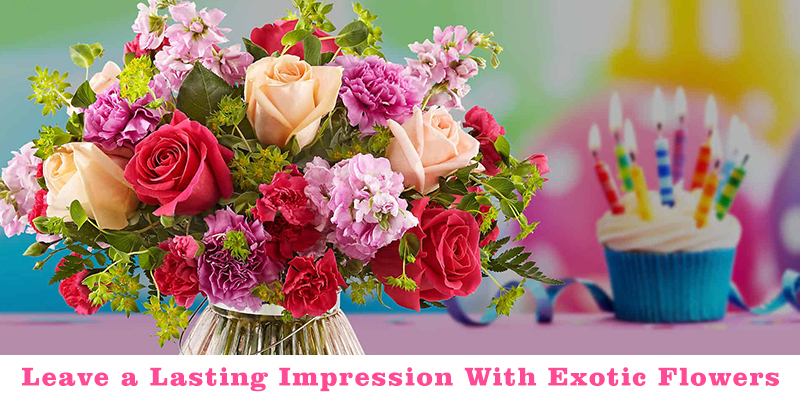 leave a lasting impression with exotic flowers
