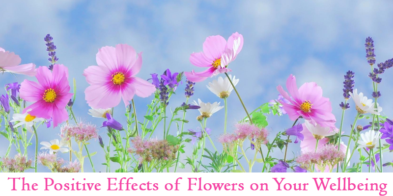 positive effects of flowers