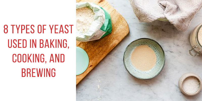 Yeast Used in Baking